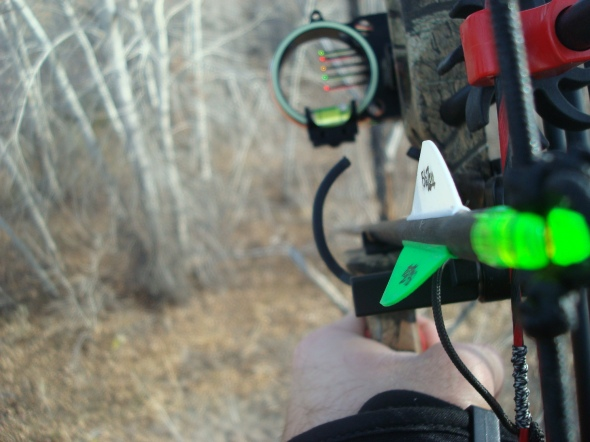 Deadly View From TreeStand