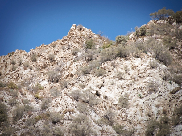 Glassing rocky hillside like this one can result in finding deer or sheep