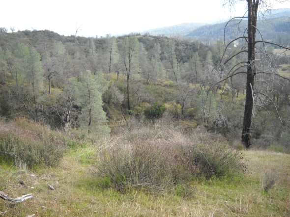 Hiking into new areas is good exercise and can lead to new hunting spots
